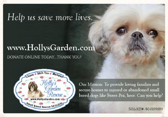Hollys Garden